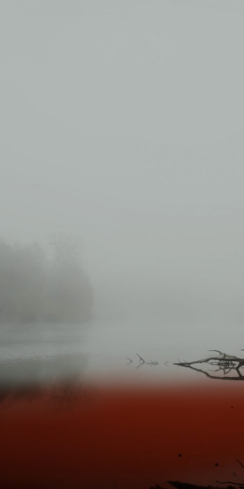 Fog in morning on the lake